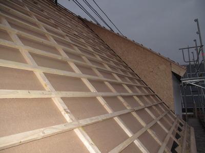 Hervorragend Dach: Gartenseite gelattet, Schräge und Kamin verkleidet – DIY WH47